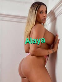 Escorts Donne alaya (savona)